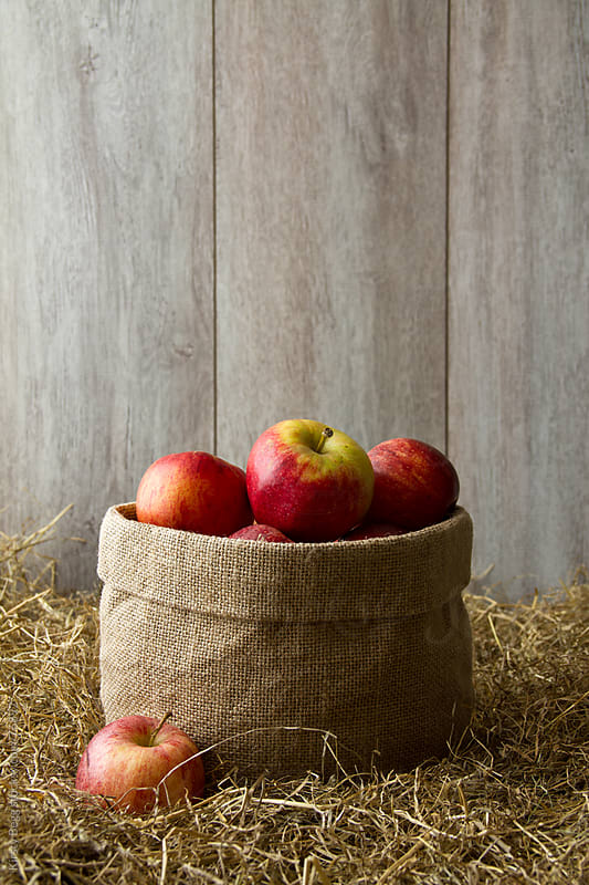 Sack of apples on hay by Kirsty Begg for Stocksy United