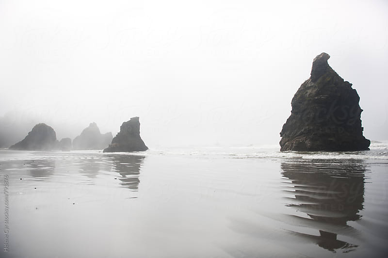 Wet and Foggy Shoreline by Helene Cyr for Stocksy United