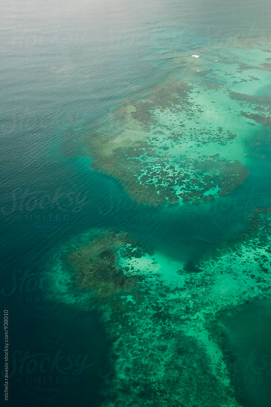 Aerial view of coral reef in Seychelles by michela ravasio for Stocksy United