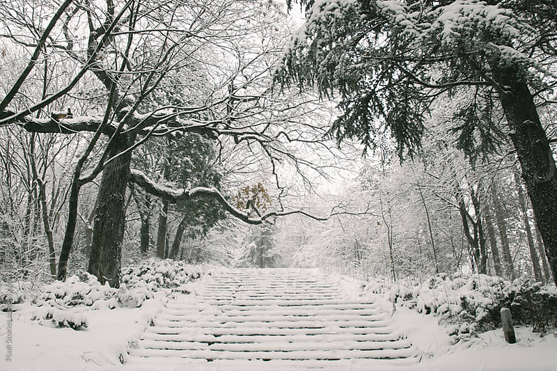 Snowy stairs by Pixel Stories for Stocksy United