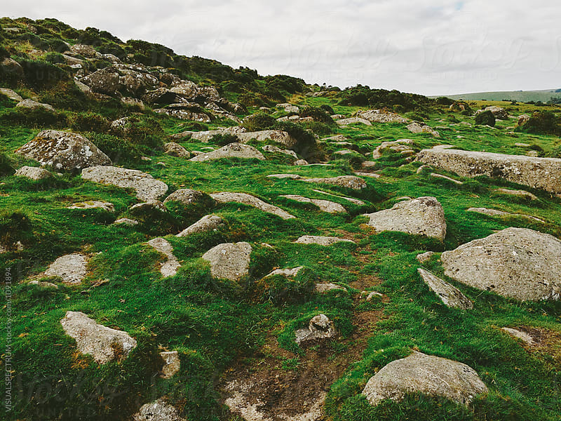 Dartmoor National Park - Many Rocks Embedded in Green Grass by VISUALSPECTRUM for Stocksy United