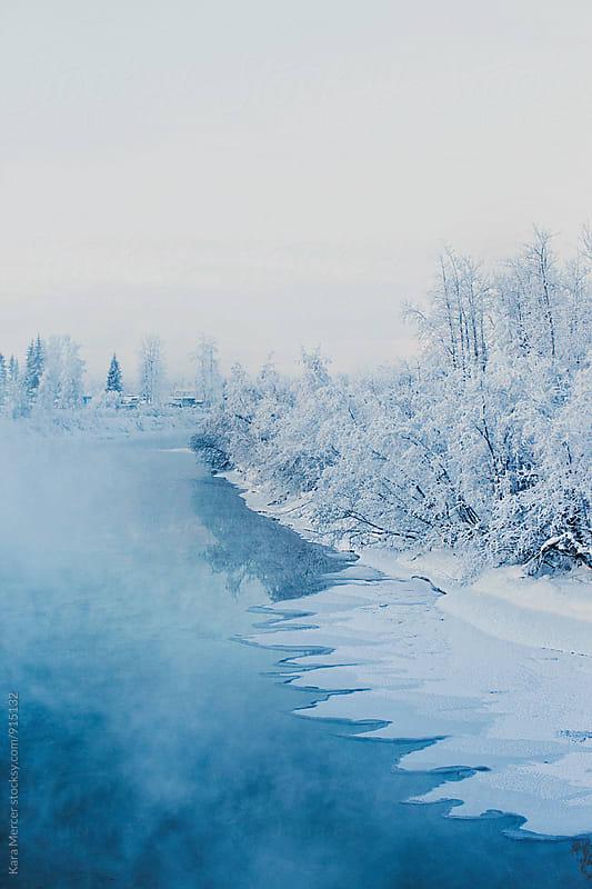 Alaskan Winter by Kara Mercer for Stocksy United