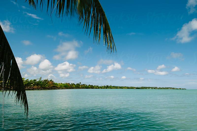 View along Upola Island, Samoa. by Thomas Pickard for Stocksy United