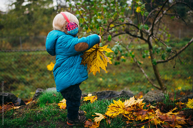 Side View of Toddler Boy Holding a Giant Leaf by Amanda Voelker for Stocksy United