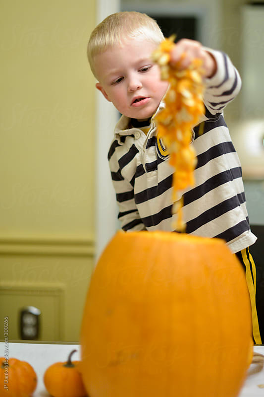 Boy Pulling Pumpkin Seeds out of Jack-O-Lantern by JP Danko for Stocksy United