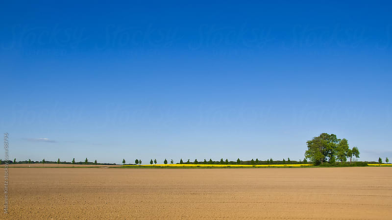 Empty field and blue sky on a spring day by Melanie Kintz for Stocksy United