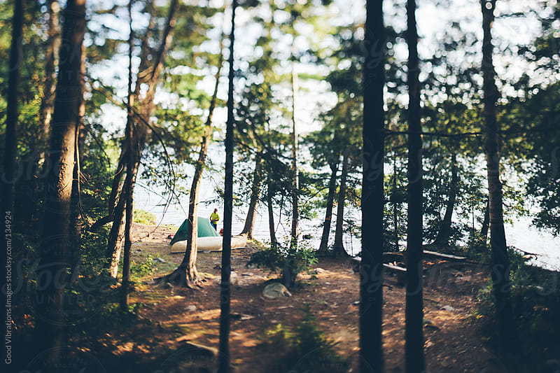 Campsite in the Forest by Good Vibrations Images for Stocksy United