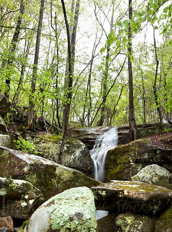 Arkansas Waterfall Flowing in the Woods by Brandon Alms for Stocksy United