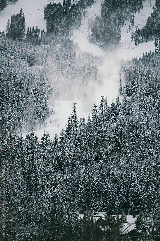 Snow guns producing snow on Whistler Blackcomb ski resort. Pine trees forest by Alejandro Moreno de Carlos for Stocksy United
