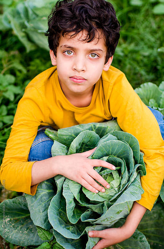 I love my Cabbage ! by Agha Waseem Ahmed for Stocksy United