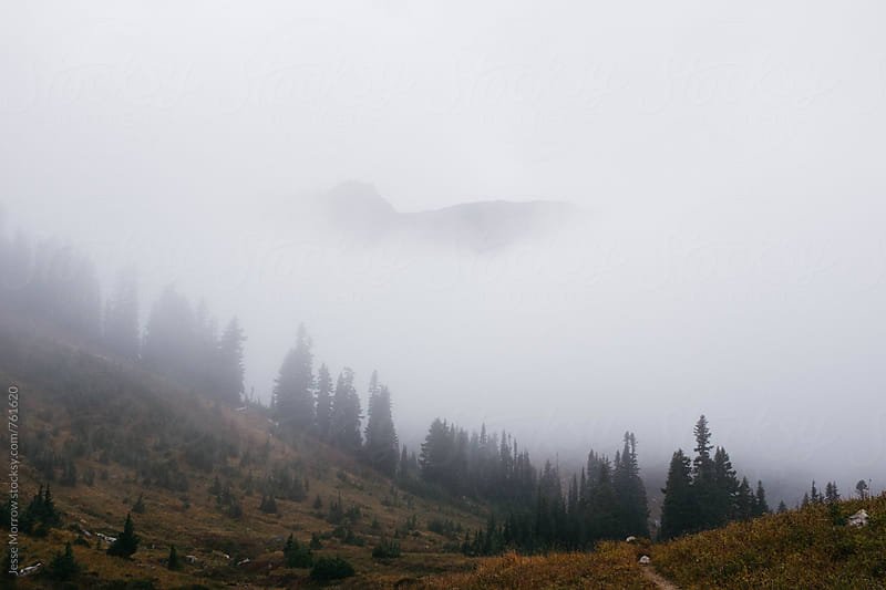 mountain top emerging from fog in northwest mountain landscape by Jesse Morrow for Stocksy United