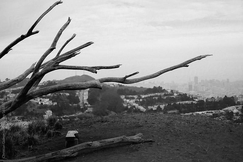 Mt Davidson San Francisco by Christian Gideon for Stocksy United