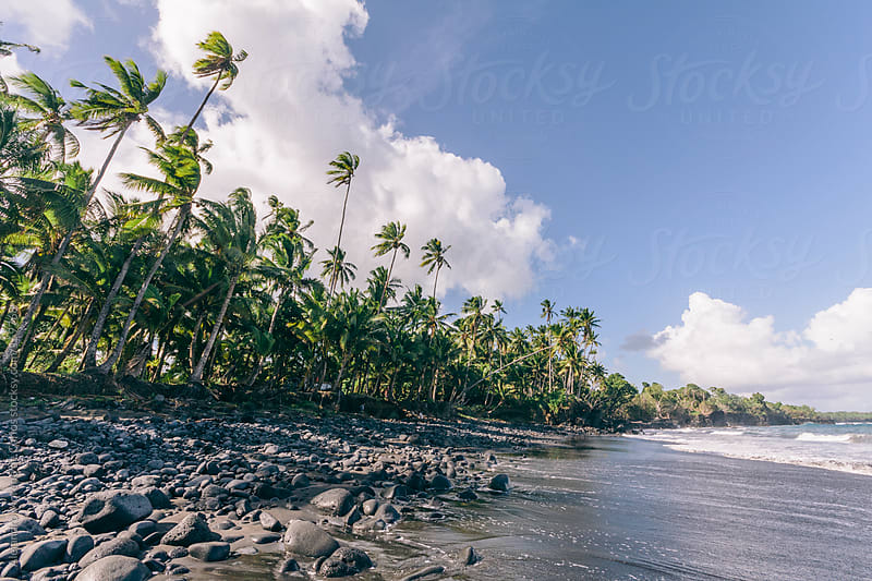 Volcanic black sand beach in tropical island, Upolu, Samoa by Alejandro Moreno de Carlos for Stocksy United