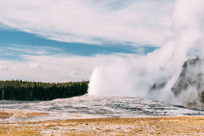 Old Faithful Geyser During Eruption In Yellowstone National Park by Luke Mattson for Stocksy United