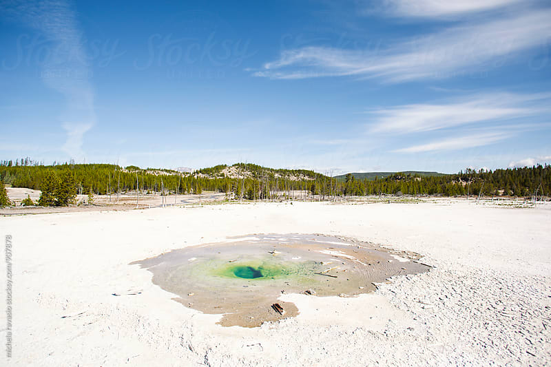 Geyser in Yellowstone National Park by michela ravasio for Stocksy United