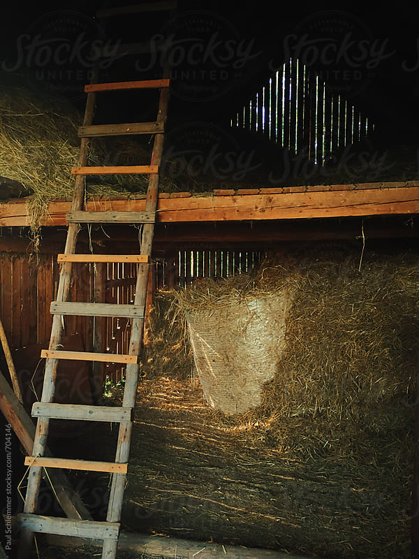old barn by Paul Schlemmer for Stocksy United