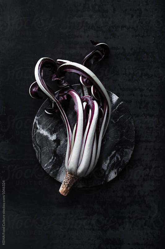 Radicchio on a black background by KEMA Food Culture for Stocksy United