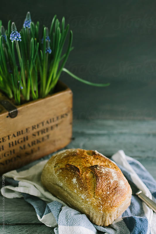 Sourdough bread by Helen Rushbrook for Stocksy United