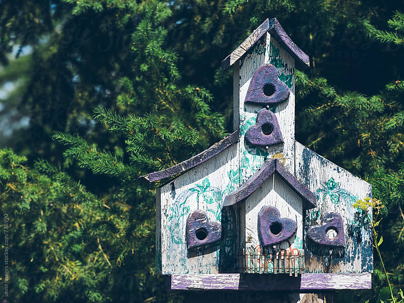 colorful birdhouse on the tree by unite images for Stocksy United