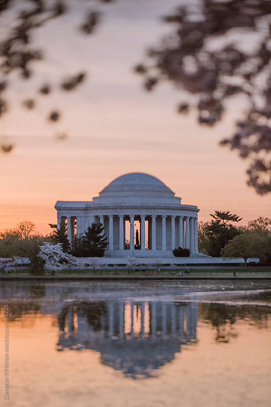 Jefferson Memorial During Sunrise Framed By Cherry Blossoms by Cameron Whitman for Stocksy United