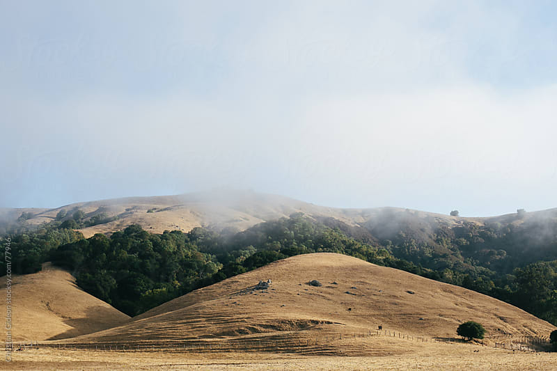 Rolling California Hills by Christian Gideon for Stocksy United