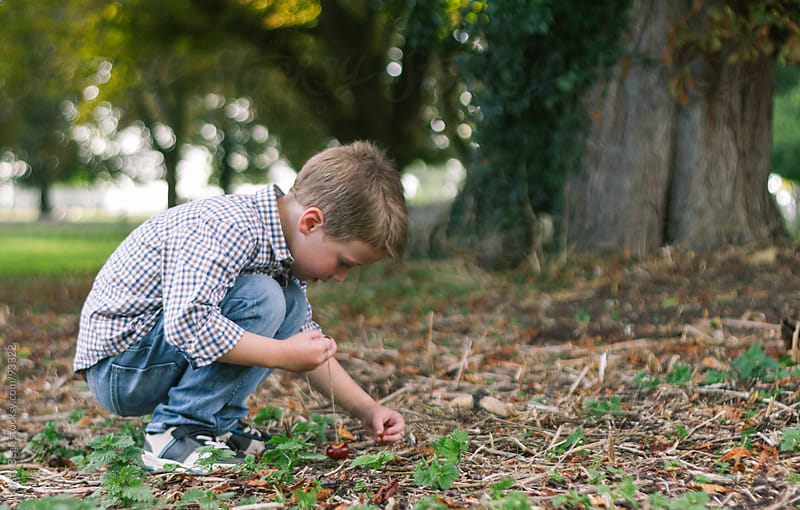 Boy searching for conkers by Kirsty Begg for Stocksy United