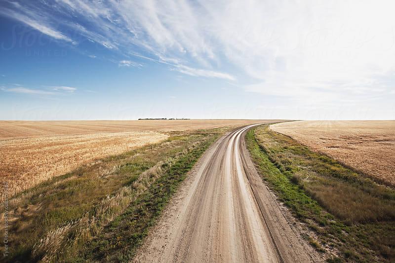 Prairie Grid Road by Tyler Olson for Stocksy United