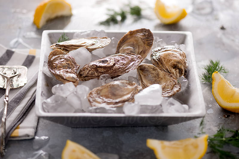 Raw Oysters by Studio Six for Stocksy United