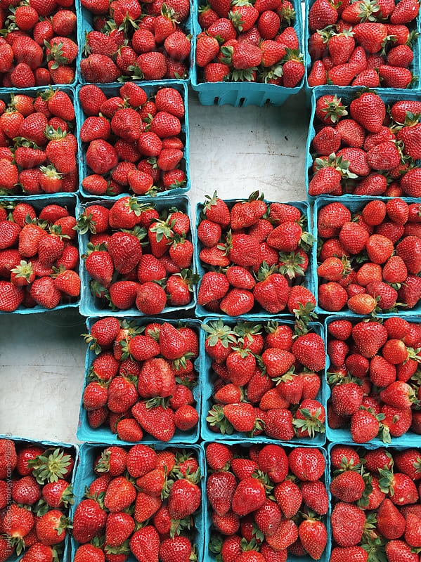 Fresh Strawberries by Taylor Kampa for Stocksy United