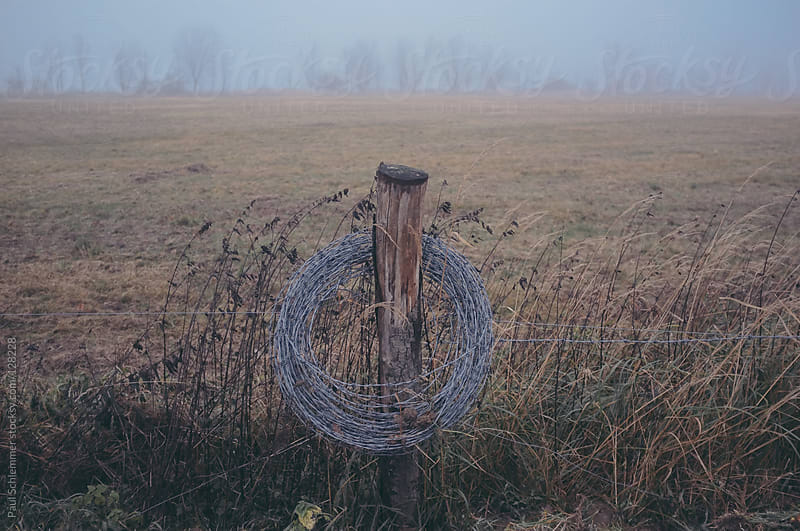 Barbed wire around grazing land by Paul Schlemmer for Stocksy United