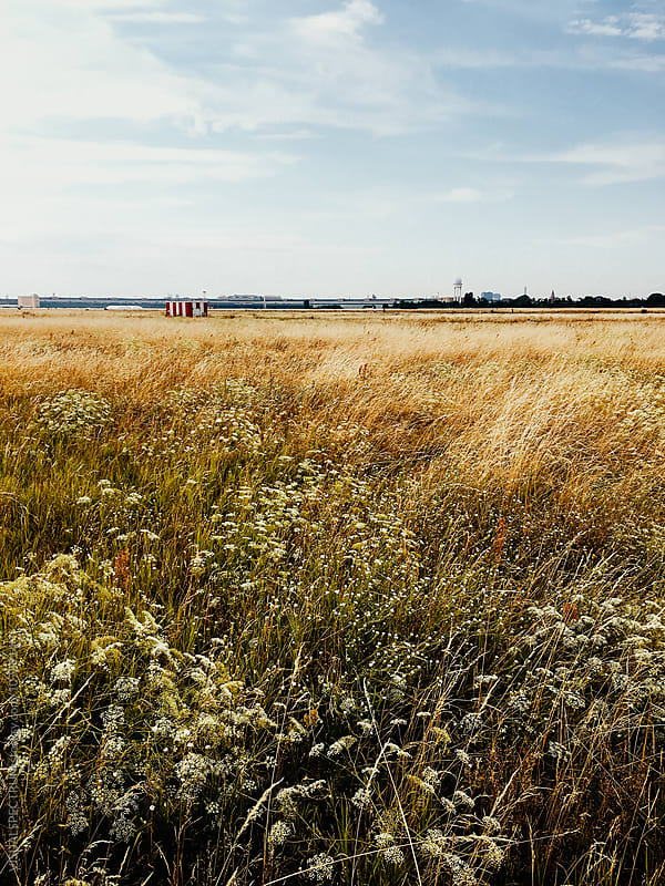 Berlin's Tempelhof Airfield on Sunny Summer Day by Julien L. Balmer for Stocksy United