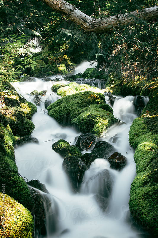 Flowing Waterfall Over Mossy Boulders In Green Forest by Luke Mattson for Stocksy United