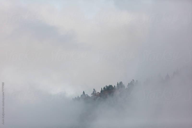 Misty mountain top by Amir Kaljikovic for Stocksy United