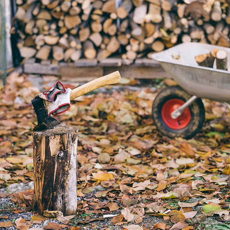 Ax for firewood by michela ravasio for Stocksy United