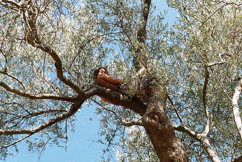 Sitting in a tree by Aleksandra Martinovic for Stocksy United