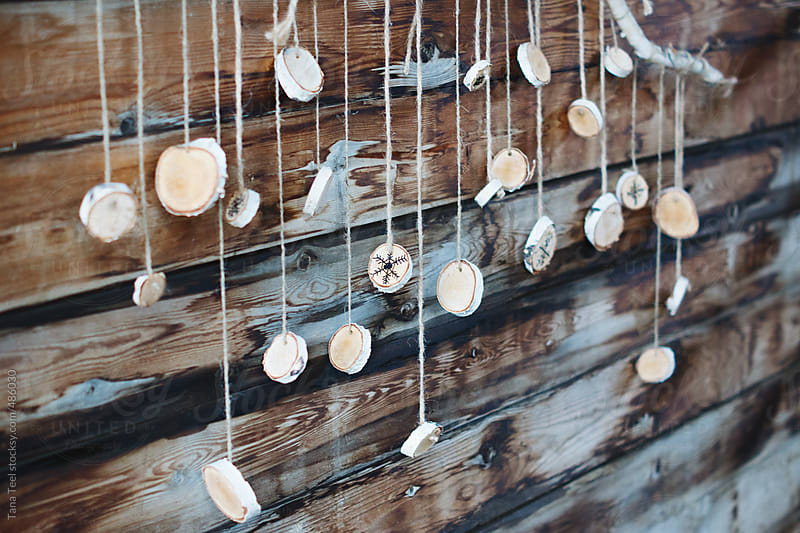 Birch wood discs hang from a branch by twine by Tana Teel for Stocksy United