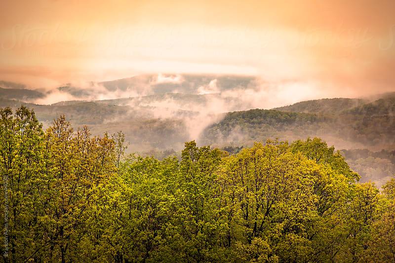 Sunrise Ozarks Mountain Fog in Arkansas by Brandon Alms for Stocksy United