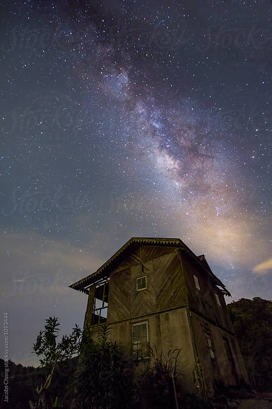 Milky Way at Tea Plantation by Jacobs Chong for Stocksy United