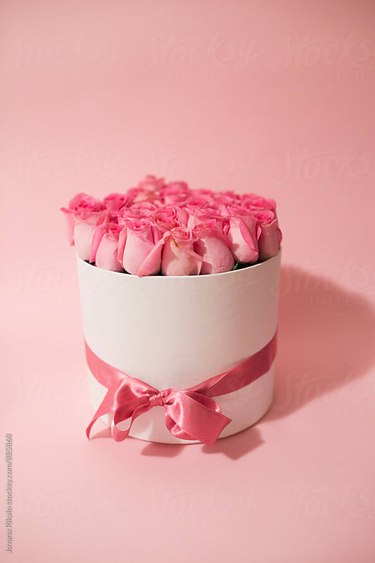 Box full of pink roses on a pink background by Jovana Rikalo for Stocksy United