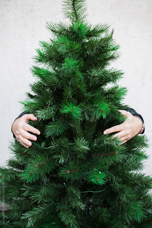 Man hugging Christmas tree by Jovana Rikalo for Stocksy United