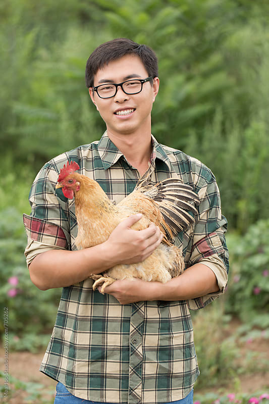 A young male farmer holding chicken by MaaHoo Studio for Stocksy United