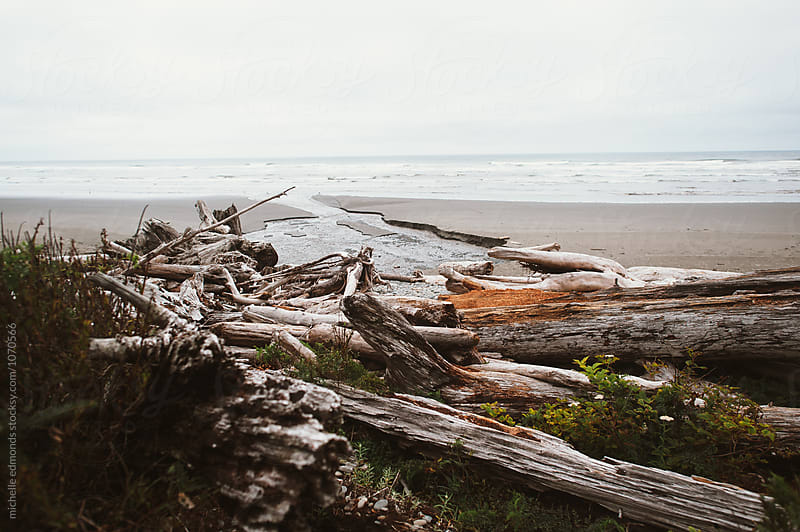 View of the Pacific Ocean in Washington with Driftwood by michelle edmonds for Stocksy United