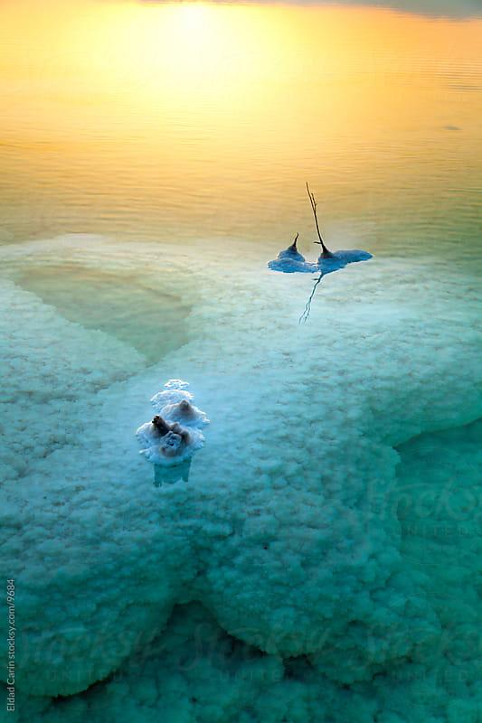 Dead Sea Sunrise - Underwater Salt Cluster by Eldad Carin for Stocksy United