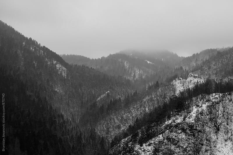 Black and White Mountain Forest Landscape by Branislav Jovanovic for Stocksy United
