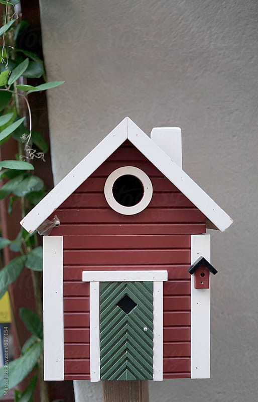 Beautiful birdhouse by Marcel for Stocksy United