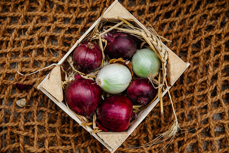 Onion bulbs in a wooden box by Andrey Pavlov for Stocksy United