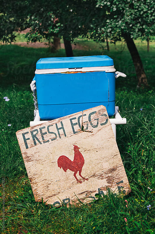 fresh eggs for sale from a cooler by Deirdre Malfatto for Stocksy United