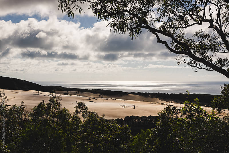 Sand dunes in Australia by Mauro Grigollo for Stocksy United