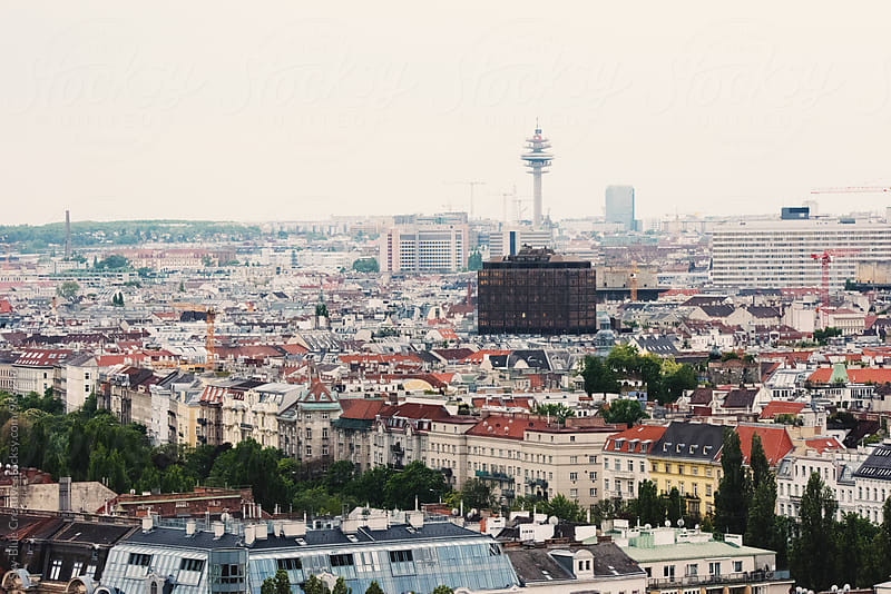 Aerial view of Vienna by Luca Pierro for Stocksy United