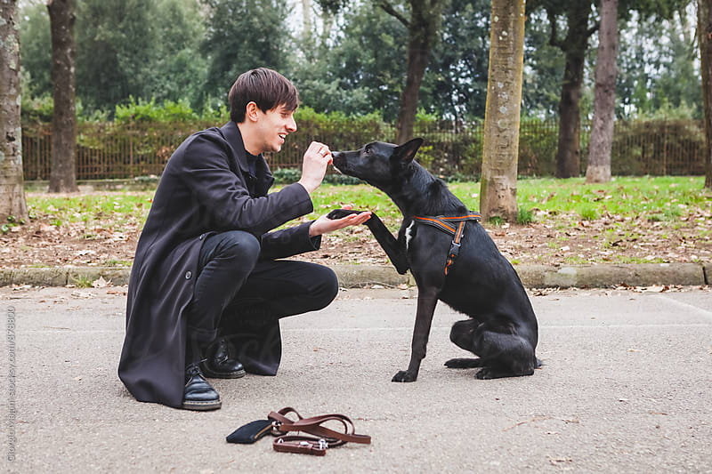 Young Man Taming his Dog with Treats at the Park by Giorgio Magini for Stocksy United